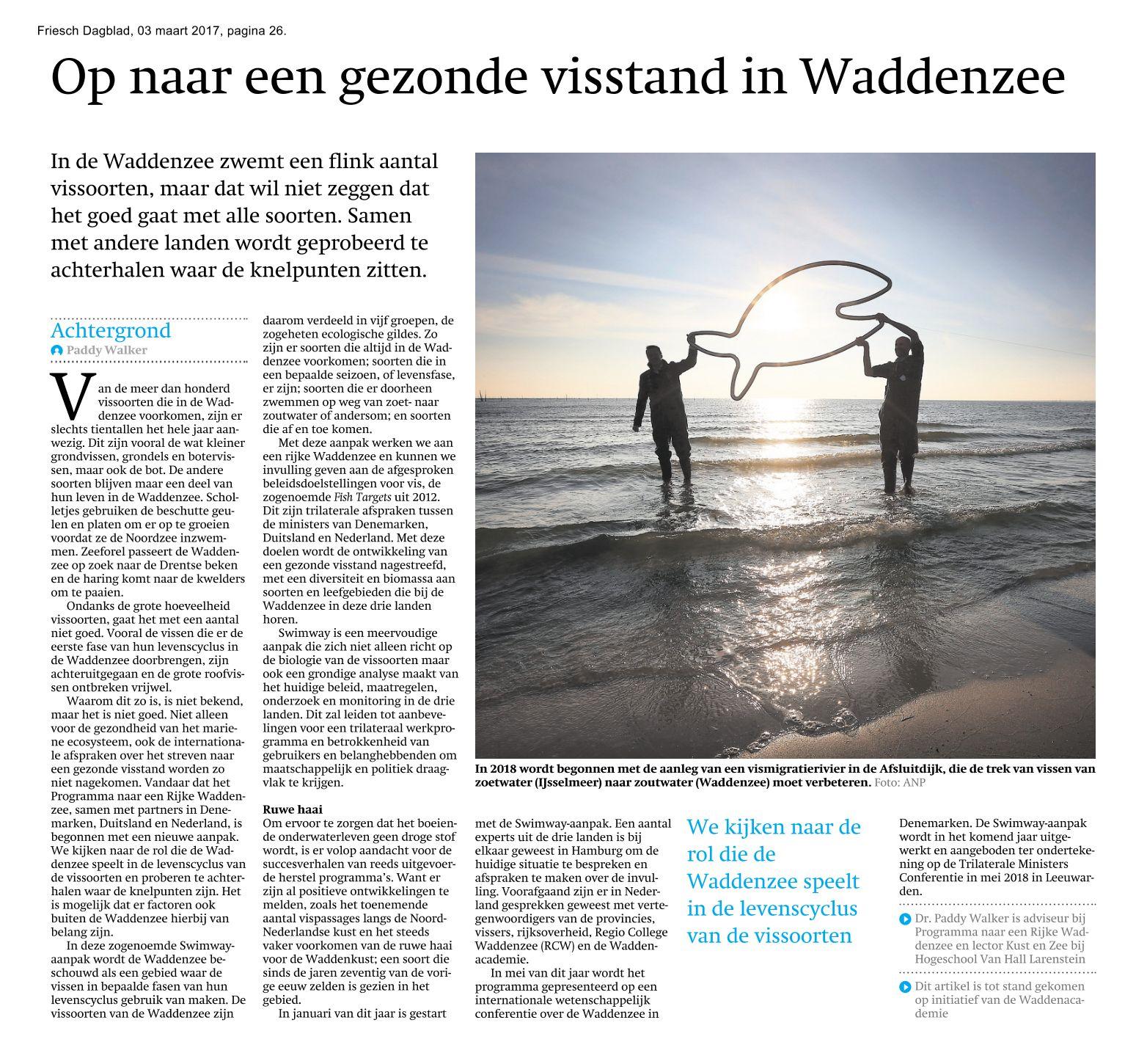 Artikel Friesch Dagblad
