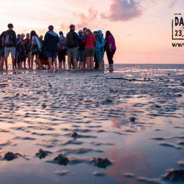 Wadlopers in Werelderfgoed Waddenzee. Dag van het Wad