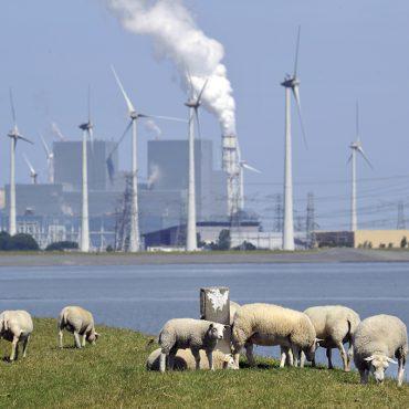 Dijk langs de Eems-Dollard met op de achtergrond energiecentrale en windenergie.