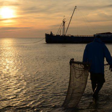 Visserij op de Waddenzee. Handkokkelen in het Werelderfgoed. FOTO: Rienk Nadema