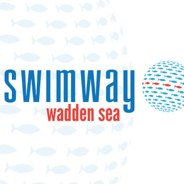 swimway-wadden-sea-visual