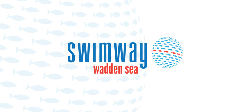 swimway-wadden-sea-visual