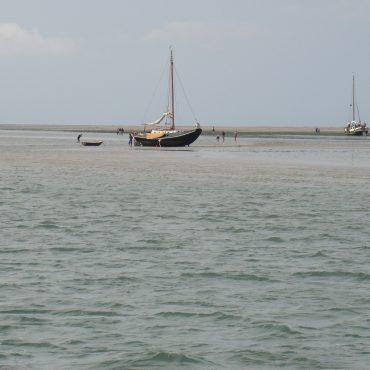 Droogvallers op op Richel. Een wadplaat in Werelderfgoed Waddenzee