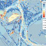 Screenshot van de radardata in de Waddenzee. Het gaat hier om de vaarbewegingen in het gebied bij Richel ten noordoosten van Vlieland.