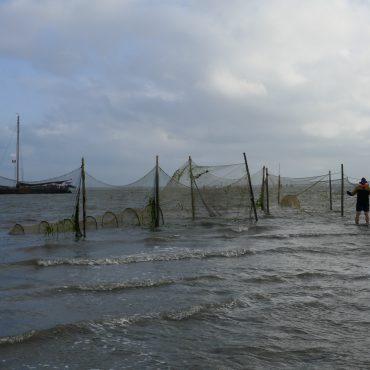 DE vismonitoringsfuik bij Schiermonnikoog is tijdelijk. Het gaat om een proef. Het moet ons helpen te bepalen wat een goede manier is om onze kennis over de visstand te vergroten.