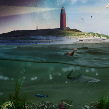 Visuele impressie vaan een Rijke Waddenzee waar PRW aan werkt