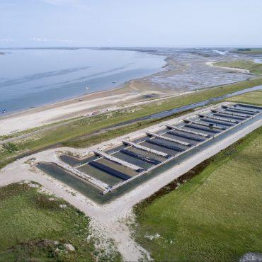 Polder Wassenaar - foto Stichting Zilte Zone