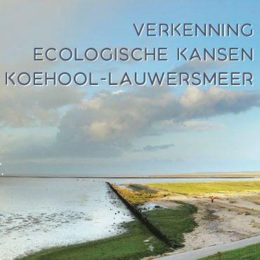 voorkant rapport verkenning ecologische kansen Koehool - Lauwersmeer