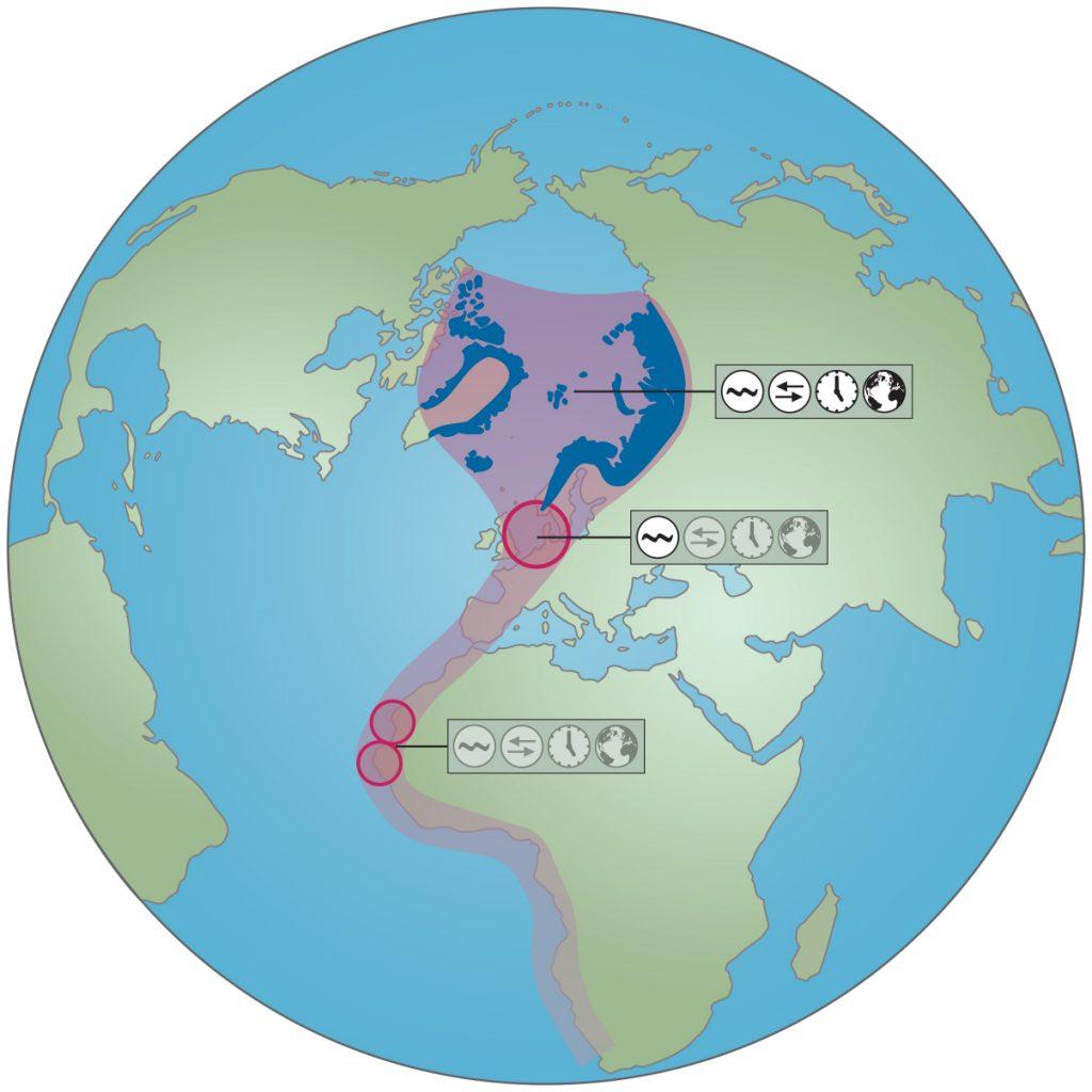 Figuur 1 rapport klimaatverandering trekvogels Waddenzee