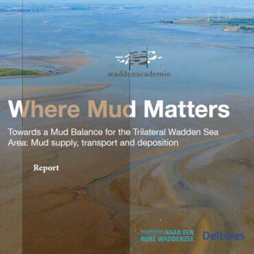 Where Mud Matters